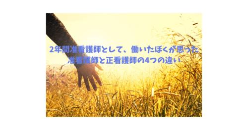 zyunkan-seikan4-samune